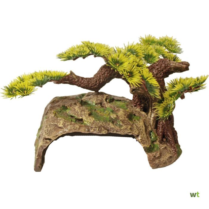 Polyresin Ornament Bonsai Boom Met Schuilplaats 24x16x12 Cm Decoratie Gebr De Boon