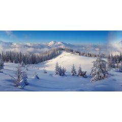 Achtergrond doek Winter Bos 150 x 75 cm kersthuisje My Village